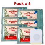 Parche Herbal Antidiabético Pack x 6